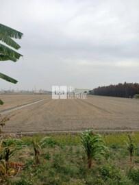 彰化竹塘農地