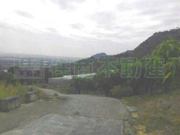 玉井景觀農地2