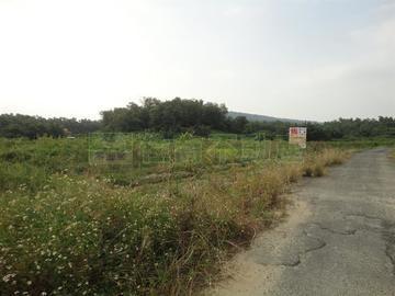 阿公店水庫休閒農地