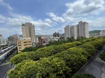❤️敦南樹海景觀❤️甲天廈高樓四房