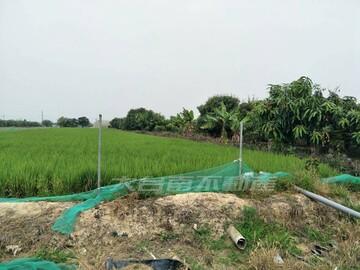 新化社區旁農地