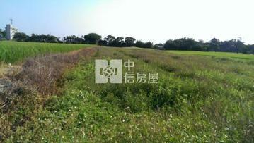 新屋漂亮農地(中信卓越團隊)