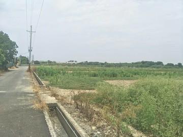 西港劉厝3.65分方正農地