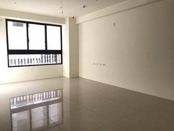 權峰全新3房+雙平車朝南明亮屋