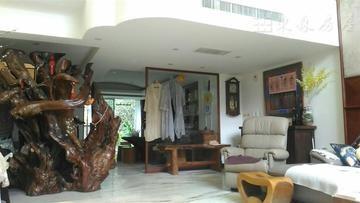 敦南山林景觀別墅 獨院獨戶 充分享有隱私 專屬前後院 綠茵景觀 客廳挑高舒適