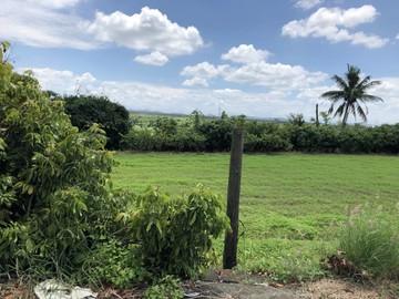 岡山大莊可投資農地~休閒養身投資超優質農地~不買可惜