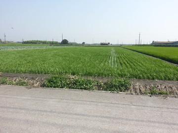溪州近中山路重劃農地2.7分